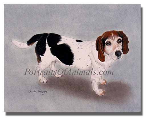 beagle dog portrait painting pet portraits by cherie
