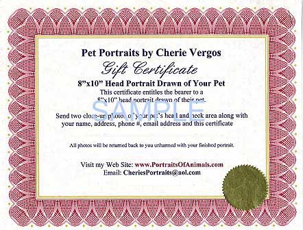 Sample of Pet Portraits by Cherie Gift Certificate