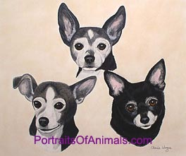 Portrait of 3 Chihuahua Dogs - Pet Portraits by Cherie