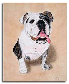 English Bulldog Custom Dog Portrait Painting from photo