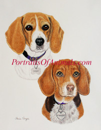 Beagle Pet Portrait painting Dog Art