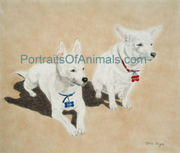 Chihuahua Portrait - Pet Portraits by Cherie Vergos