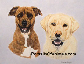 Boxer Mix and Yellow Lab Dog Portrait