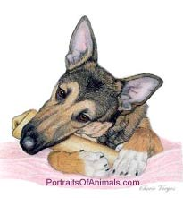 German Shepherd Dog Portrait - Pet Portraits by Cherie