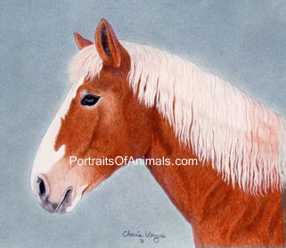 Belgian Draft Horse Portrait - Pet Portraits by Cherie Vergos